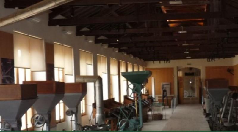 8_fórum museu da cortiça