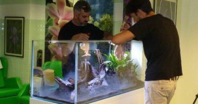 27_aquário_ptm