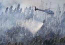 Monchique discute formas de atuação em situação de catástrofe