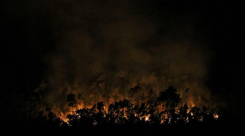 incendios1a