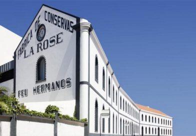 Museu de Portimão recebe 2.º Simpósio Internacional de Pintura