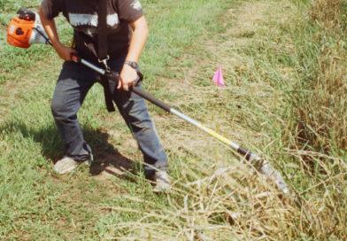 Marmelete recebe jornadas técnicas sobre Segurança e Prevenção de Acidentes de Trabalho na Floresta
