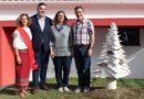 «Árvore Monumental» homenageia araucárias centenárias em Monchique