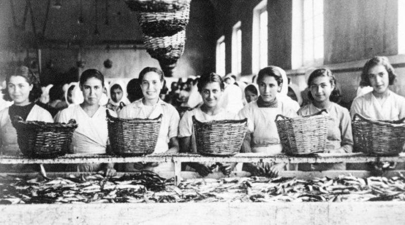 Museu de Portimão recebe ante-estreia do filme «Portugal tem lata»