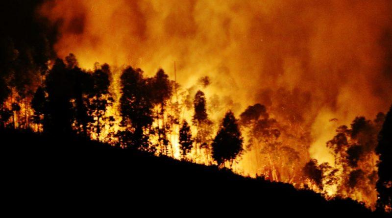 Incêndio-em-Monchique